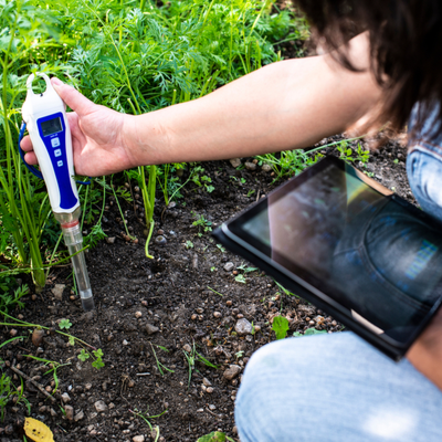 maintaining ph soil level